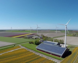 CODEVELOPING THE FIRST LARGE-SCALE PEER-TO-PEER ENERGY TRADING MARKET IN THE NETHERLANDS